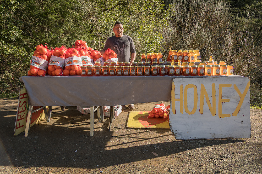 """""""I've been doing this for three years...business is good.""""  -Clear Lake resident Juan Hernandez mans his fruit and honey stand near the corners of Petrified Forest and Porter Creek Roads."""