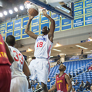 Delaware 87ers Forward Damian Saunders (18) dunks while driving to the basket in the first half of a NBA D-league regular season basketball game between the Delaware 87ers and The Fort Wayne Mad Ants Sunday, Dec. 15, 2013 at The Bob Carpenter Sports Convocation Center, Newark, DE