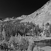 Weir Lake Overlook - Infrared Black & White