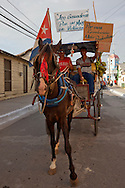 Horse in Niquero, Granma, Cuba.