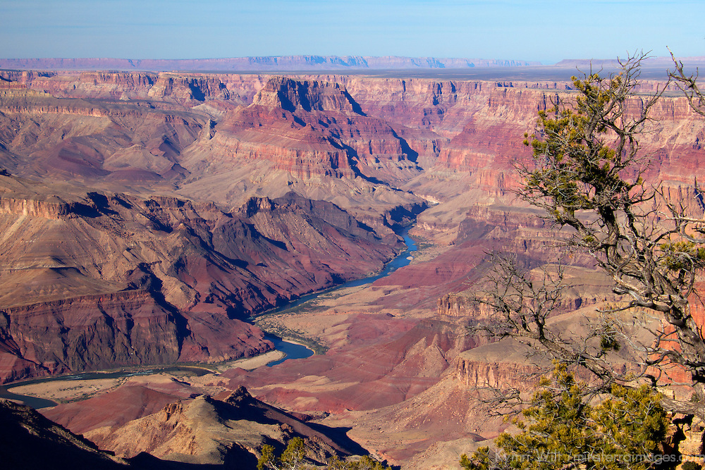 USA, Arizona, Grand Canyon. The Colorado River runs through the Grand Canyon, a UNESCO World Heritage Site, view from the south rim.