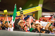 SAN JUAN, PUERTO RICO FEBRUARY 3: Fans for Mexico come out strong with noise makers, flags and painted faces during the game against Puerto Rico on February 3, 2015 in San Juan, Puerto Rico at Hiram Bithorn Stadium(Photo by Jean Fruth)