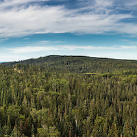 RAM - Wild Alberta
