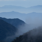 Eastern slopes of the Peruvian Andes in clouds, Wayqecha Cloud Forest Biological Station, Andes Mountains, Peru