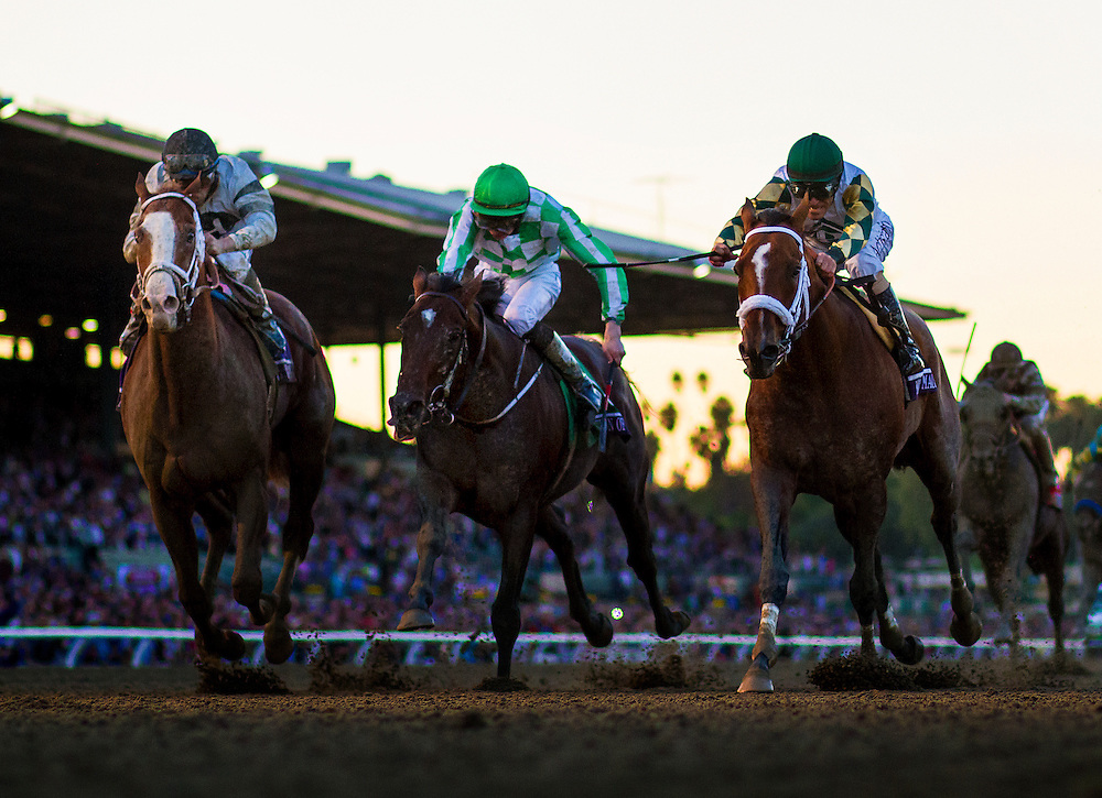 Mucho Macho Man, ridden by Gary Stevens  (right) defeats Declaration of War (center), with Joey O'Brien and Will Take Charge ridden by Joel Rosario to win the Breeders' Cup Classic on November 2, 2013 at Santa Anita Park in Arcadia, California during the 30th running of the Breeders' Cup.(Alex Evers/ Eclipse Sportswire)