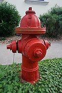Hydrant on red.