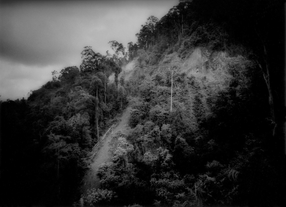 Great gashes in the rainforest made by loggers skidding fallen trees down hillside, Deep Interior of Sarawak, Malaysian Borneo..