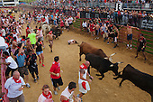 Great American Bull Run for Sports Illustrated