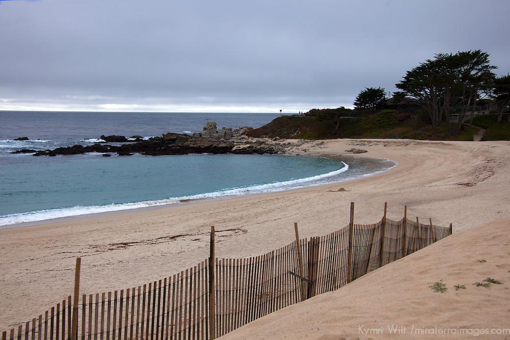 USA, California, Carmel by the Sea. Carmel River State Beach.
