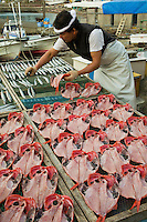 Japanese Fishmonger at Inatori Fishing Port . Fresh fish is an important form of food for the Japanese, who consume it nearly every day.