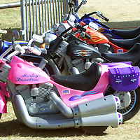Battery-powered toy motorcycles lined up at the Harley-Davidson Experience in downtown Milwaukee August 30, 2003. The legendary American motorcycle company is celebrating its 100th anniversary over four days.    REUTERS/Rick Wilking