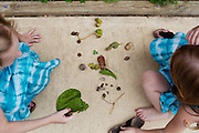 (L-R) Hayley Kudro, 6, and Aubrey, 4, play with leaves, rocks and acorns in front of their home in Waynesboro, Virginia on Wednesday, June 15, 2011. Hayley, then 5, was diagnosed with a softball-sized mass near her liver that turned out to be neuroblastoma in September of 2009.