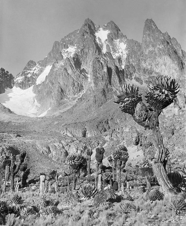 The Peaks, Mount Kenya, Kenya, Africa, 1937