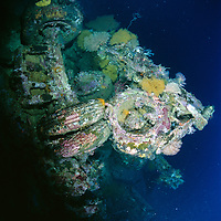 Trucks on the Toa Maru, once a   Japanese transport ship, off of Gizo, Solomon Islands.