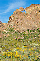 Giant rock arch at Arch Canyon in Organ Pipe Cactus National Monument