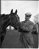"""1960 - """"Another Flash"""" with trainer P Sleator"""