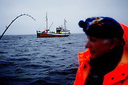 Vestfjorden, Nordland, Norway, 24.03.12..Skipper Steinar..The vessel Anne Marie with skipper Steinar Henriksen and (blue cap) brought out Team Olsen at the Arctic Cod fishing world championship. The team; Geir L. Olsen (glasses), Magne Øvregård (white hat/red rainclothes) and Peder E. Vik (dark hair) won the following awards in the world championship:.1st place four man team with 2351,40kg Geir, Peder and Magne (last person sick, so the three competed with handicap)..1st place two man team Geir with Torunn Handeland.2nd place total weight - Geir L. Olsen.4th place total weight - Peder E. Vik.6th place total weight - Magne Øvregård.Steinar Henriksen was also awarded best skipper...Photo by: Eivind H. Natvig/MOMENT