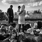 "Refugees rests in a so-called ""collection point"" right after crossing the border from Serbia, on september 12, 2015. Thousands of refugees, most of them from Syria, cross this border everyday with the hope to reach european countries like Sweden or Germany. The next step for them will be to register in Hungary before continuing their long journey."
