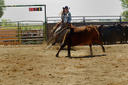Cowgirl, Jann Parker, riding quarter horse in cutting horse competition