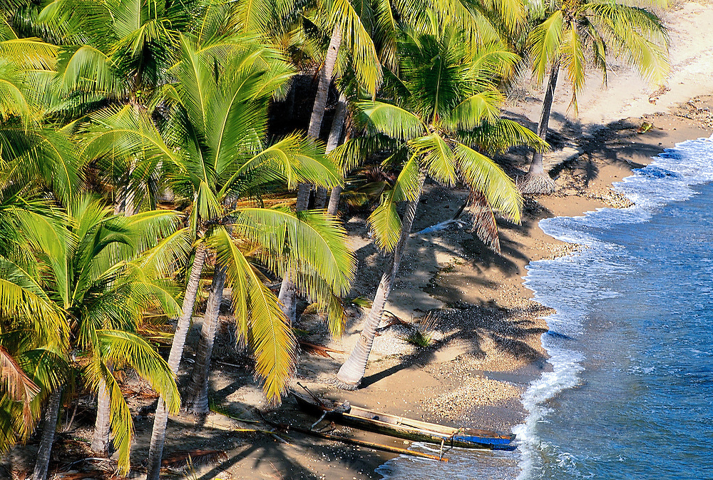 Island Beach Palm Tree Palm Tree Ffringed Beach