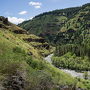 Wenaha River Trail, Blue Mountains, Umatilla National Forest, Oregon, USA. This panorama was stitched from 2 overlapping images.