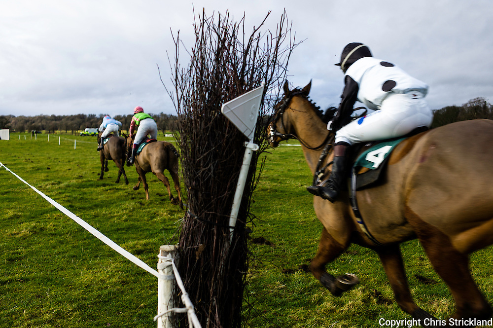 Kelso, 26th January 2014  - The Jedforest Hunt held their annual race card at Kelso on Sunday. A total of 93 entries competed in the 7 races.