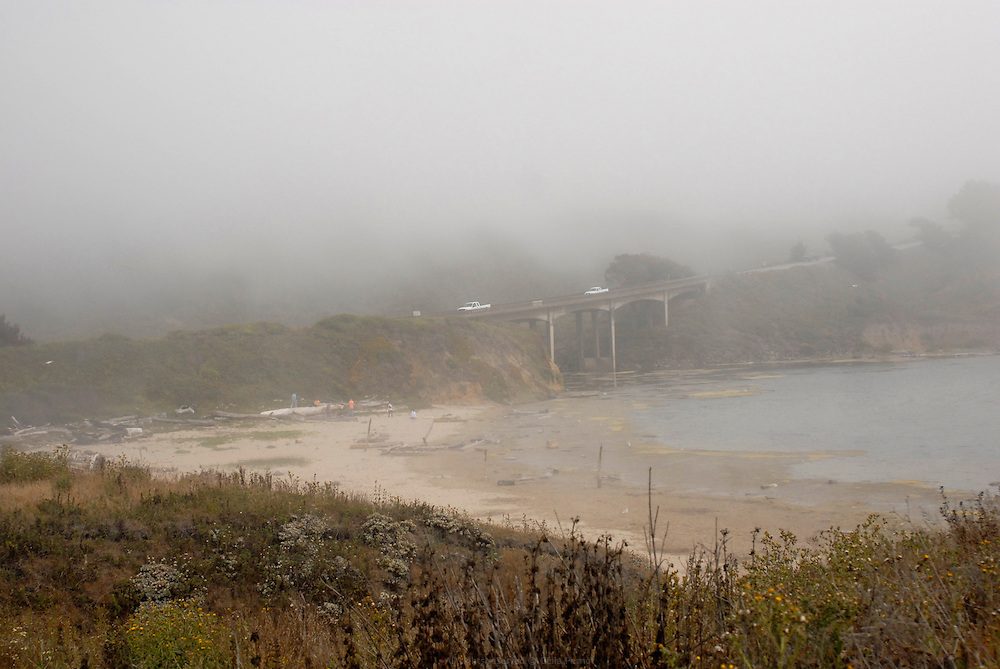 San Gregorio state beach in the fog, July 2008