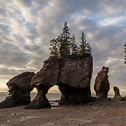 Sunrise. Visit Hopewell Rocks (Flowerpot Rocks) at Hopewell Cape, near Moncton, New Brunswick, Canada. Hopewell Rocks have one of most extreme tidal ranges in the world: up to 16 meters (52 feet) vertically. Waves and tides twice per day have eroded the base of the rocks faster than the tops, leaving arches and curiously shaped formations of dark sedimentary conglomerate and sandstone rock. For best photo lighting, go in morning (or spectacular sunrise) during the first low tide of the day, safe for 3 hours before low tide until 3 hours after. Walking the beach is easy until its southern end, where The Ledges, a ridge of slippery limestone, can be clambered over to reach Demoiselle Beach. Bay of Fundy has the highest tidal range in the world, due to a resonance of being just the right length (270 km) matching the gravitational pushing cycle of the Moon that causes the tides. Due to the bay's optimal size, the time it takes a large wave to go from the mouth of the bay to the inner shore and back is practically the same as the time from one high tide to the next. (See the effect of resonance by steadily pushing a long pan of water back and forth: an optimal pushing frequency for a given pan size will build up a high wave of water which sloshes out; but pushing too fast or too slow won't build up the big wave.) Two high tides occur per day, one when the ocean side of the Earth is nearest the Moon, and one on the side most distant from the Moon, about 12 hours and 25 minutes from one high tide to the next. The Bay of Fundy is on the Atlantic coast of North America, on the northeast end of the Gulf of Maine between the Canadian provinces of New Brunswick and Nova Scotia. Address: Hopewell Rocks Ocean Tidal Exploration Site (phone 506-734-3429), 131 Discovery Rd, Hopewell Cape, NB E4H 4Z5.