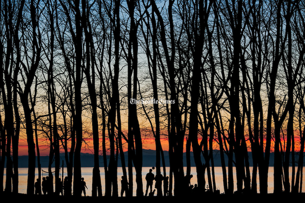 The warm colors of winter dusk could be seen through the silhouette of trees at the Golden Gardens Park in the Ballard neighborhood of Seattle.<br />