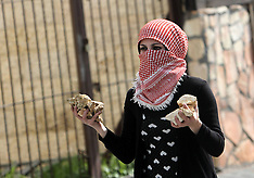 FEB 25 2013 Palestinian Protesters