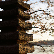 Japanese Pagoda // Washington DC