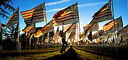 A young girl leaps to touch a flag amongst thousands of others waving in the breeze at the Memorial Field in Gresham, Oregon. The event commemorated those lives lost in the 9/11 attacks and war in Iraq.