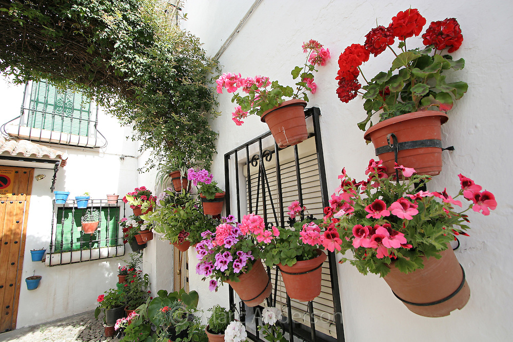 Typical Spanish courtyard with flower pots.