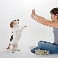 dog; canine; portrait; portraiture; beagle, woman, girl