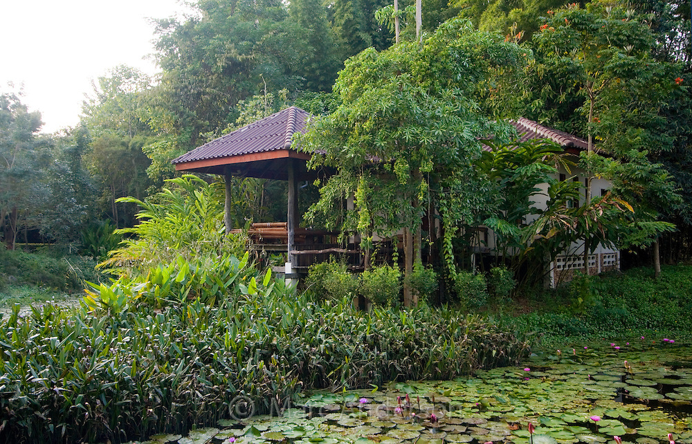 Gazebo surrounded by a lily pond, Thailand
