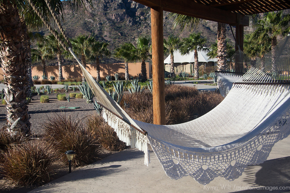 Mexico, Baja California Sur, Loreto. Hammock at Villa del Palmar Loreto.