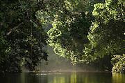 Mapari River<br /> North Rupununi<br /> GUYANA<br /> South America