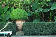 France, Languedoc Roussillon, Gard, Petite camargue, jardin, propriete de Bruno Carles
