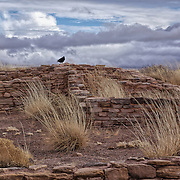 Photo by Leandra Lewis of Puerco Pueblo Ruins on cloudy, windy winter day.