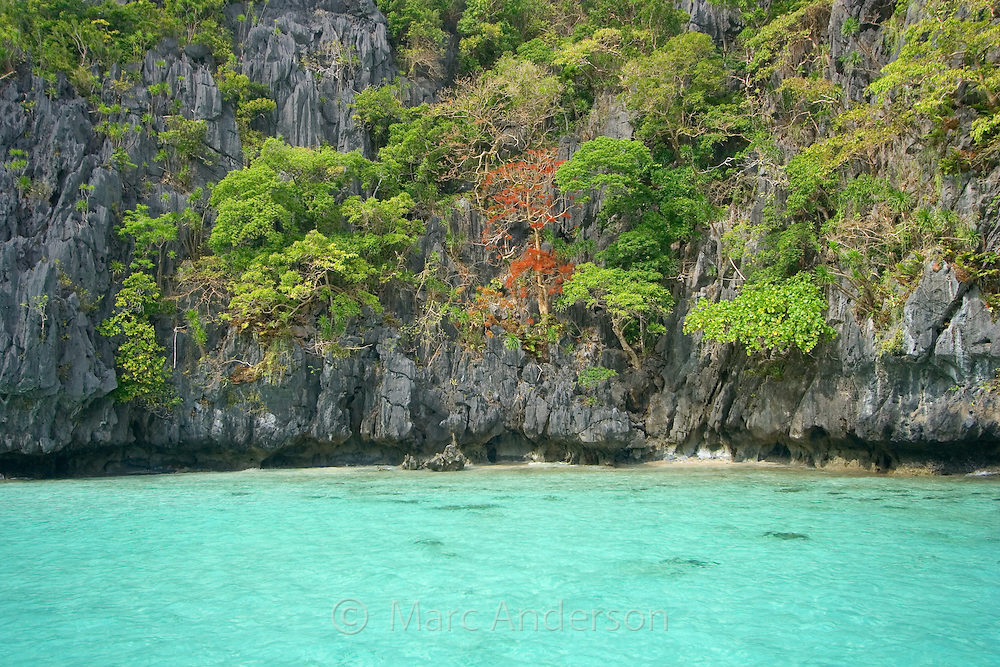 Beautiful clear water in Big Lagoon surrounded by limestone cliffs in the Bacuit Archipelago , El Nido, Palawan, Philippines.