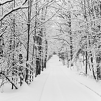 http://Duncan.co/snowy-trees-on-small-rural-road
