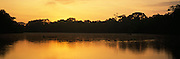 ECUADOR, ORIENTE, AMAZON Napo River (Amazon basin) dugout canoe