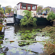 Holland 2010