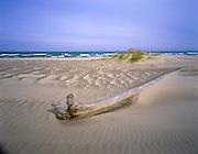 BB07039-05...INDIANA - Sand along the shore of Lake Michigan in Indiana Dunes National Lakeshore.