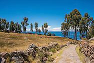 Pathway on Taquile Island, Lake Titicaca, Peru