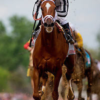 May 01, 2014: My Miss Sophia with Javier Castellano up  finishes second in the Kentucky Oaks at Churchill Downs in Louisville Ky. Alex Evers/ESW/CSM