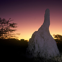 Termite mound at dusk outside the grounds of the Namutoni rest camp's old fort's tower (center left) in the Etosha National Park, Namibia, Africa