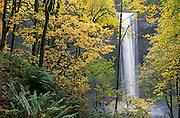 South Falls in autumn, Silver Falls State Park, Oregon.