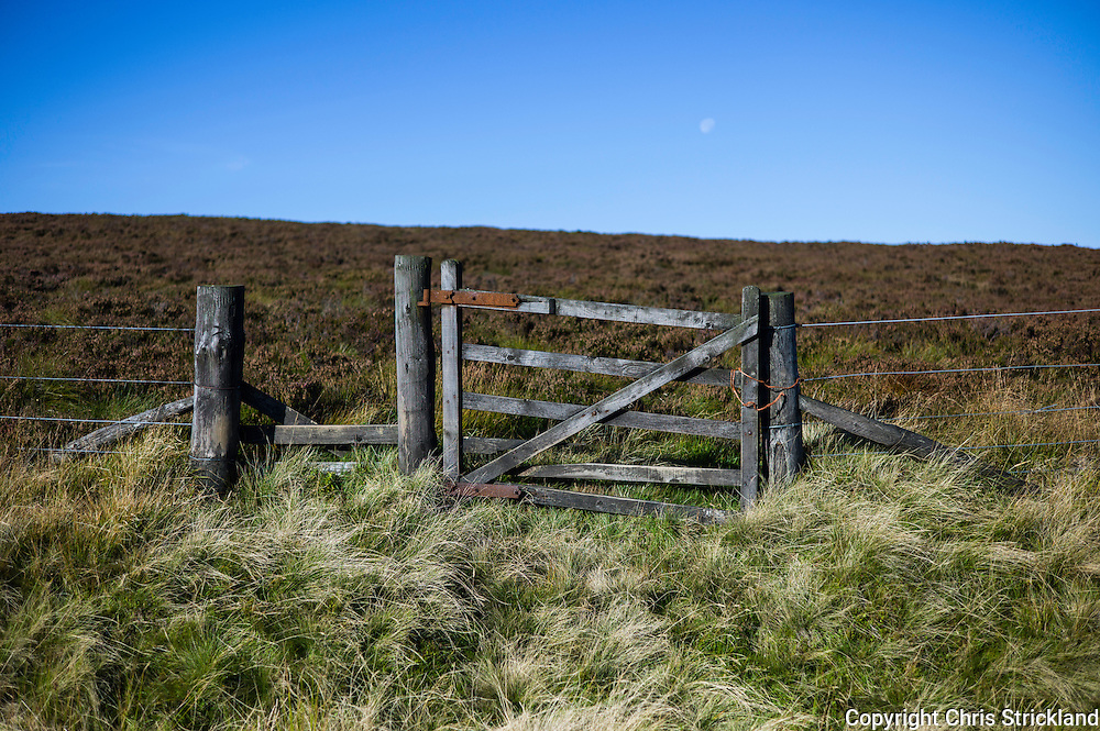 Pennine Way, Cheviot Hills, UK. A gateway and fenceline divides the Anglo Scot Border in the Cheviot Hills on the Pennine Way.