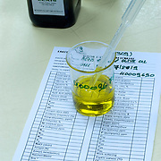 olive oil quality testing